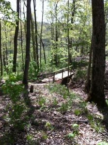 Crutcher Trail Bridge 1