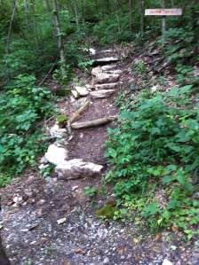 Cliff trail at River Trail (Ken Brooks)