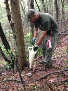 Treating Hemlock wooly adelgid at the Bad Branch Nature Preserve © TNC Staff