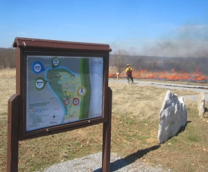 Controlled Burn at Dupree Nature Preserve