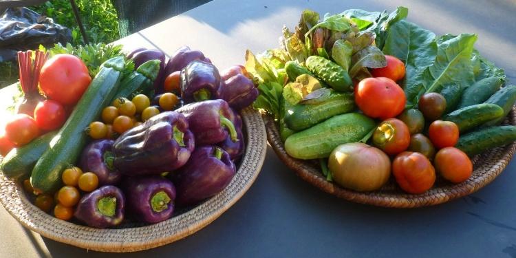 Vegetables (Noclveglia-Creative Commons)
