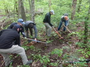 Volunteers clear the trail (3)