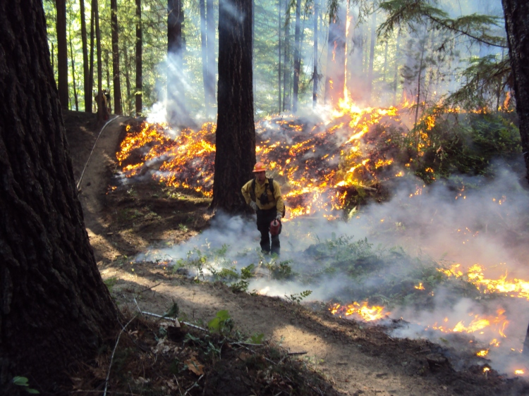 western-wildfire-2016-4