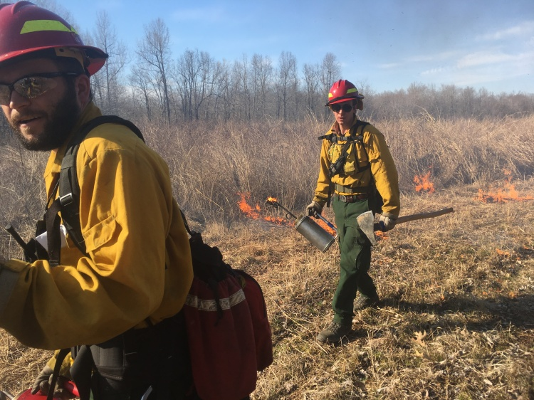 Shaun Gerber and Preston Foote conducting a prescribed fire in the grasslands of western Kentucky